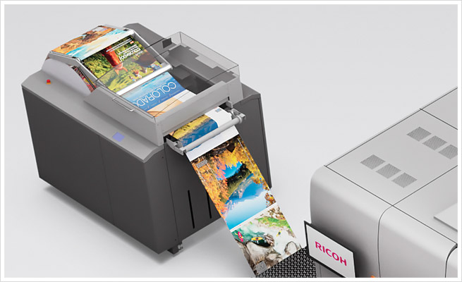 Precisely what is VDP (Variable Info Printing) Together with Precisely how it will help Your enterprise